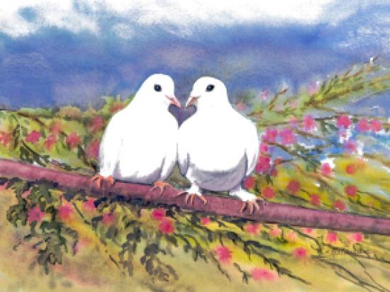 Deux colombes s'aimaient d'amour....