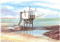 Pêcherie blanche Côte de Jade