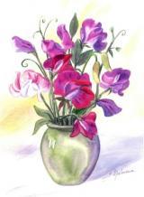 Pois de senteur dans vase
